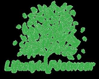 LifestyleFootwear_Logo.png