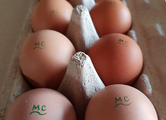 600g Dozen Pasture Raised Eggs