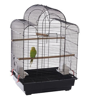 baby-budgie-cage.jpg