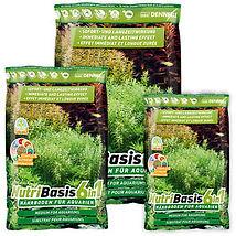 planting soil.jpg