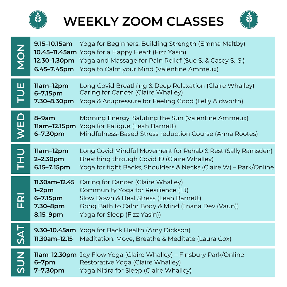 weekly zoom classes (8).png