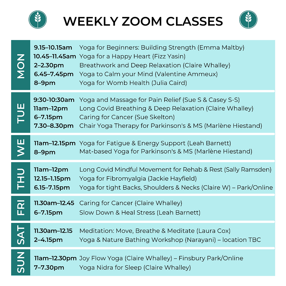 weekly zoom classes (6).png