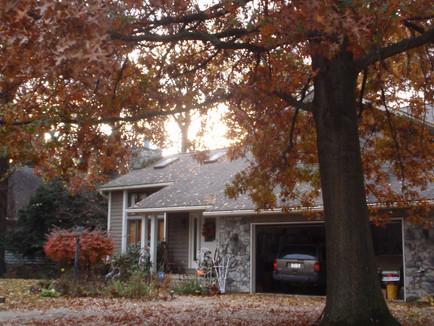 No more raking leaves, we hope!
