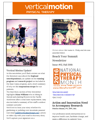In this newsletter you'll find a review on what the literature says about the Regional Interdependence, an update on the running program and research project we included in the Base Camp program, and a short summary of why we like suspensions straps for our patients.