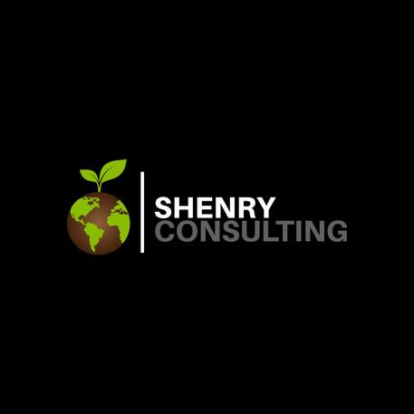 Shenry Consult - Logo Design dev. by us Ltd