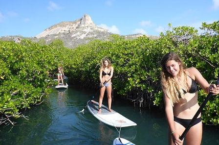 guided-paddleboarding.jpg
