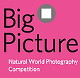 Big-Picture-2016-Natural-World-Photograp