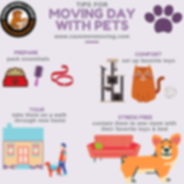 Moving Day with Pets (1).png