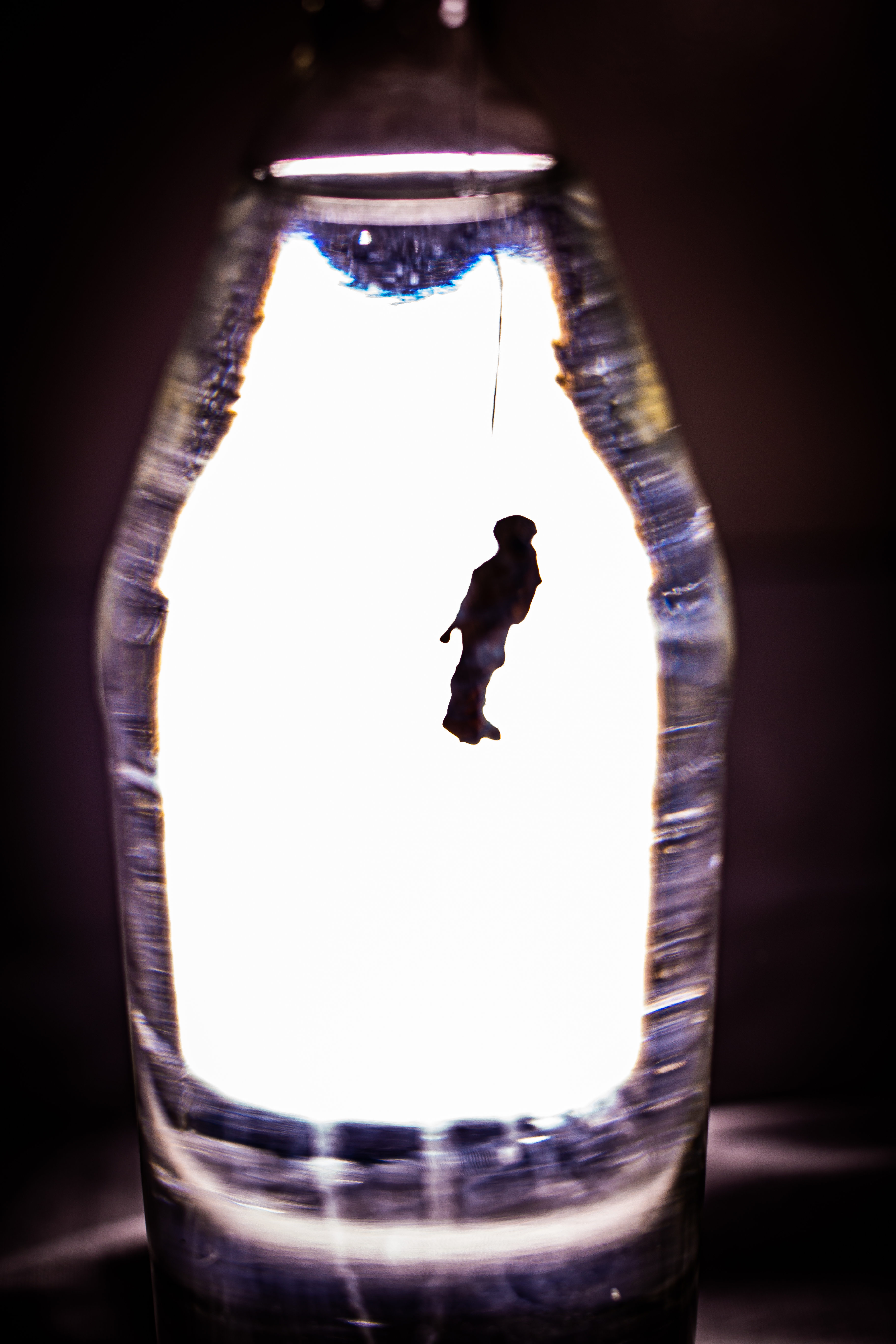 BottledHumanity-06