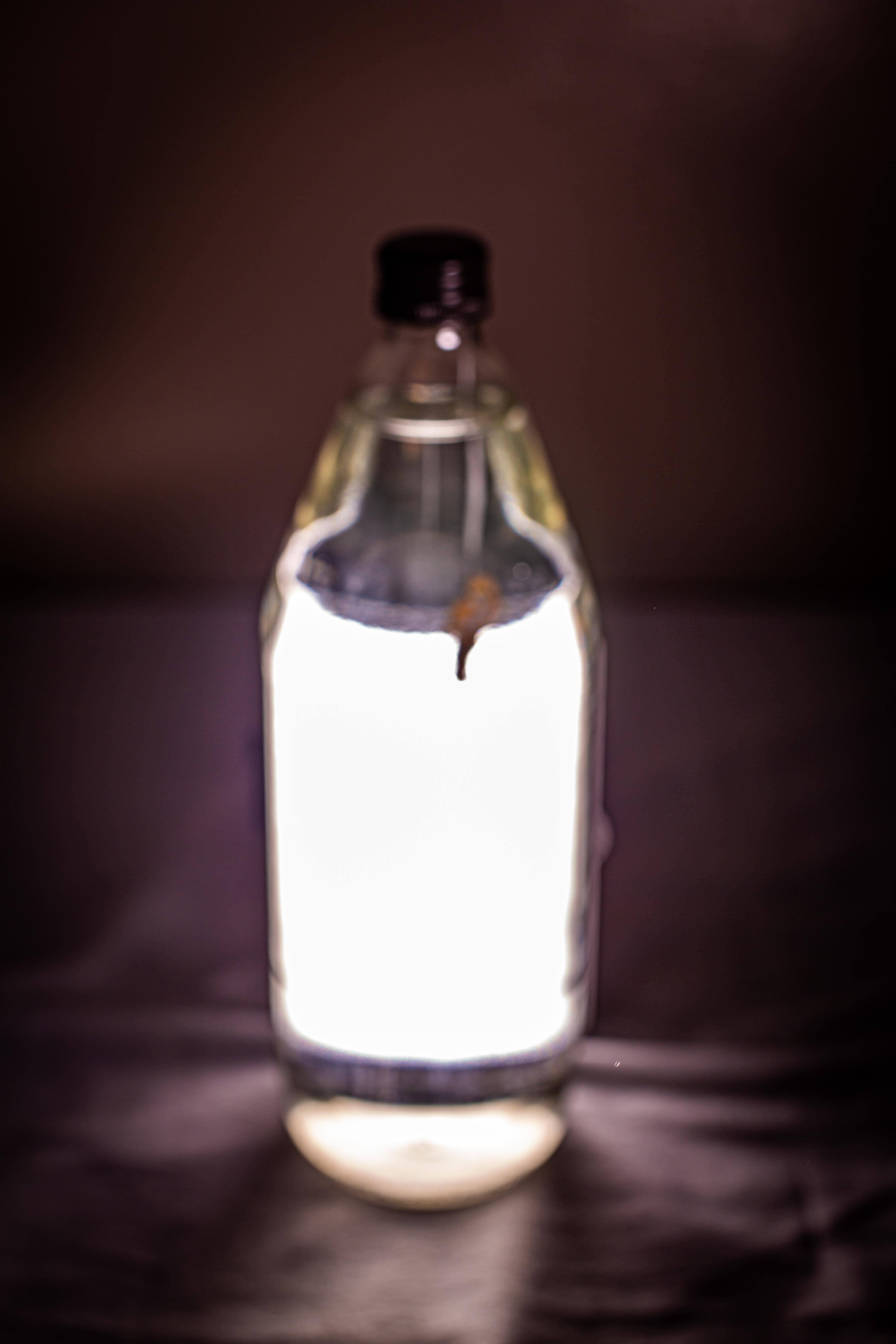 BottledHumanity-09