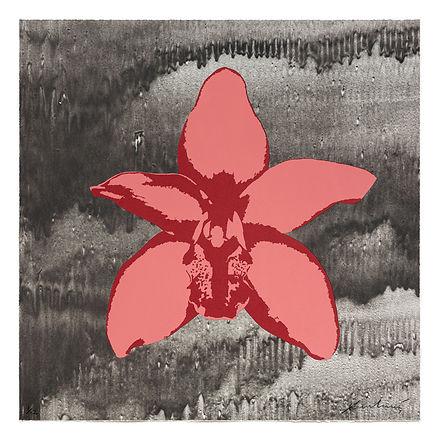 Russel Wong Cymbidium Orchid.jpg