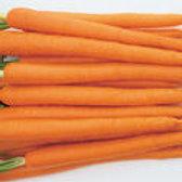 Sugarsnax - Carrot