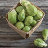 Dagan - Brussel Sprouts