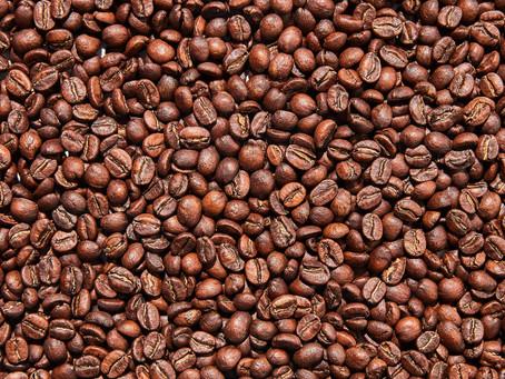כל מה שרציתם לדעת על פולי קפה - ואיך בכלל בוחרים אותם?!