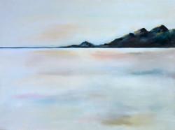 Newfoundlands & Salt Flats