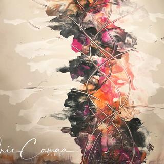 copyright iris camaa
