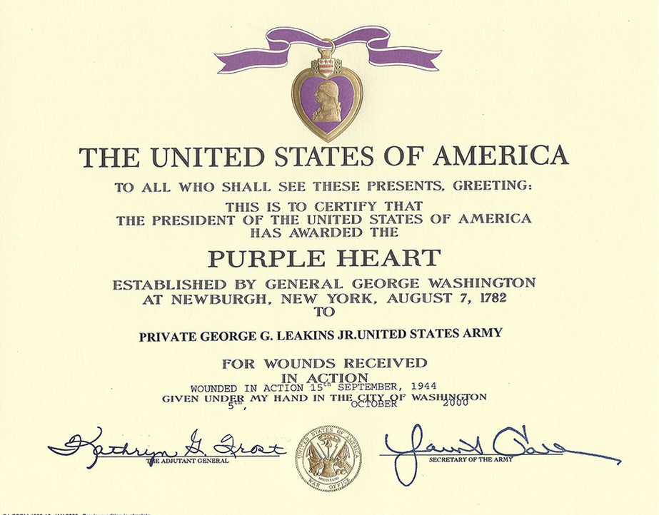 purpleheart2.jpg