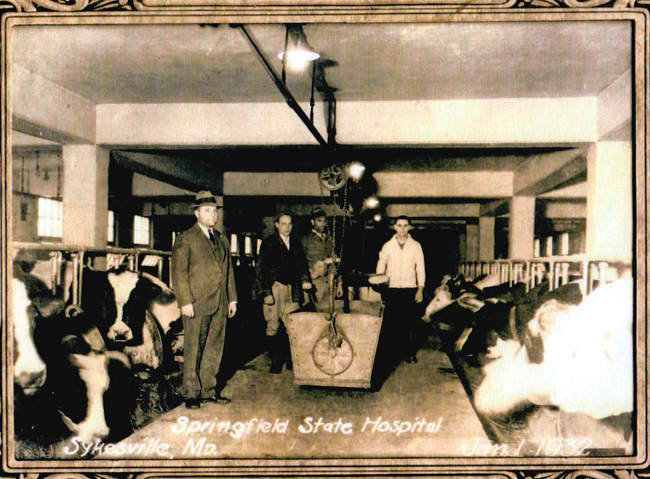Dairy Barn at Springfield, January 1, 1932