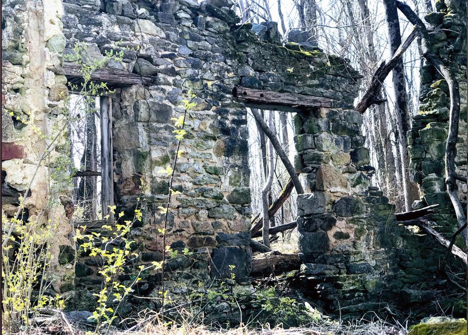 View inside Groveland Ruins