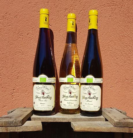 Vins Sigillés.jpg