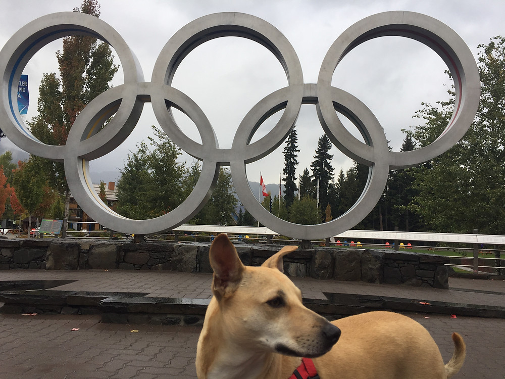 Iris at the Olympic Rings in Whistler, BC