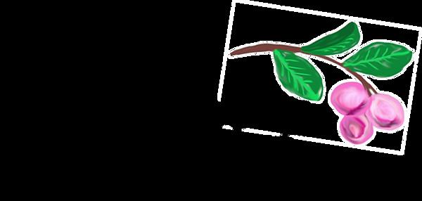CocoPlum Logo.png