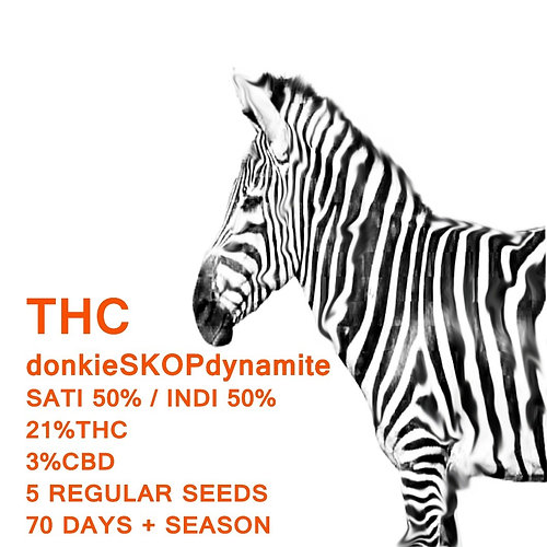 donkieSKOPdynamite - SeedWorx Laboratories
