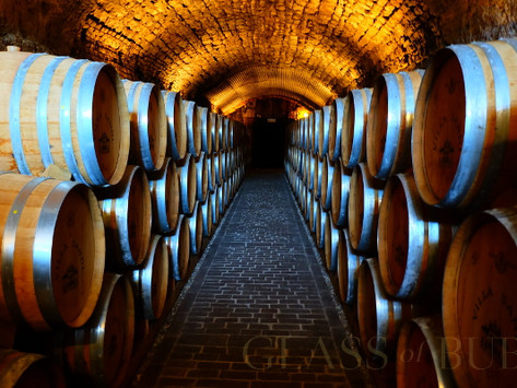 What to expect when booking a wine tour vacation