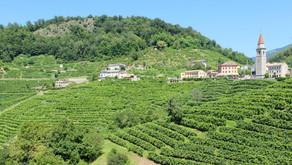 Prosecco - Creamy Wines and a Dreamy location