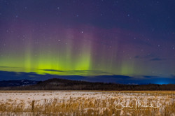 Aurora Borealis February 6, 2021