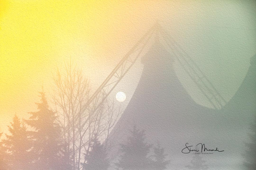 Foggy Morning Pavilion Sunrise Oil Filte