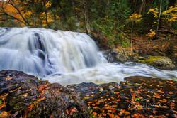 Stokely Creek October 2018 (16 of 18)