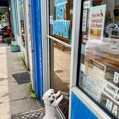 Park Pet Supply _ Winsty at Door.png