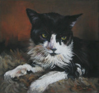 Black and White Cat Portrait Painting