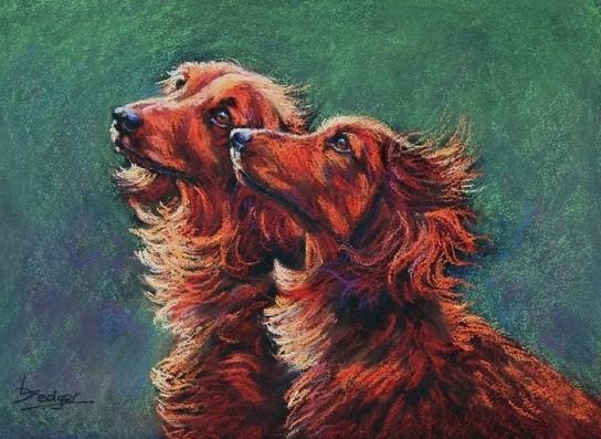 Two Dachshunds portrait