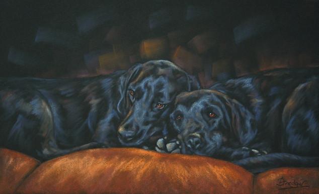 Two Black Labradors Painting