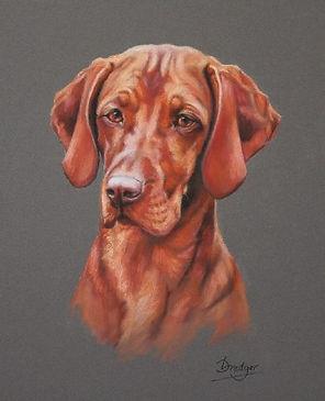 Hungarian Vizsla Portrait Painting