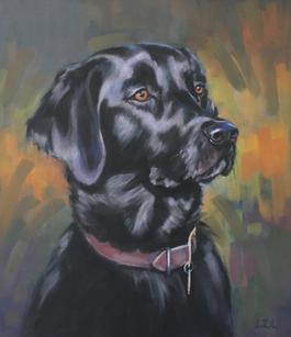 Black Labrador Pastel Dog Portrait