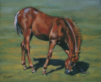 Chestnut Foal Painting