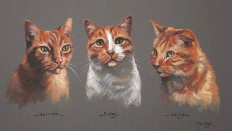 Three Cats Pastel Portrait