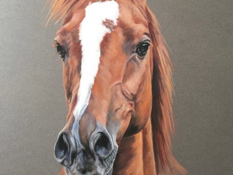 Latest Horse Portrait Chestnut Horse Commissioned Painting