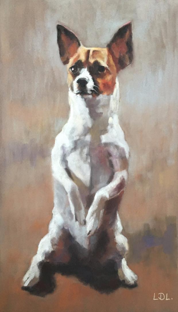 Pastel Dog Pet Portrait