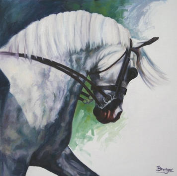 Out of the Shadows - Grey Show Horse Oil Painting