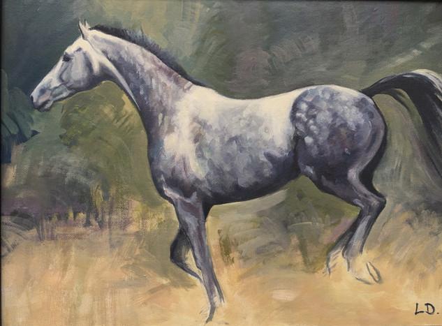 Footloose - Grey Horse Oil Painting