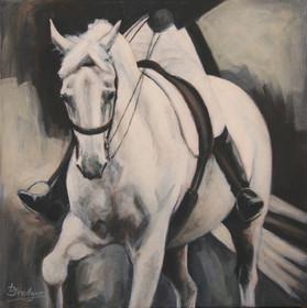 Grey Dressage Horse Painting