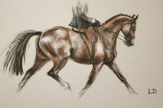 Bay Horse Side Saddle Pastel Drawing