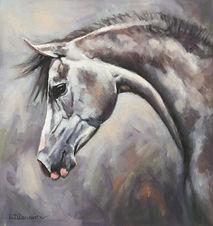 Grey Arab Horse pastel portrait painting