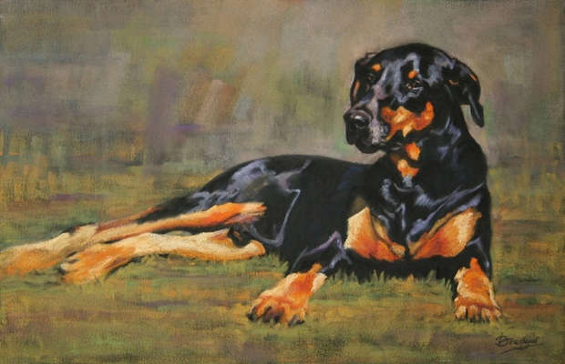 Doberman Pastel Painting