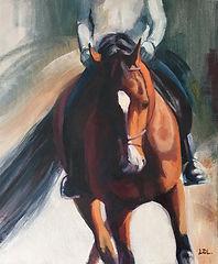 Bay Dressage Horse Schooling