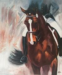 Bay Dressage Horse Half Pass